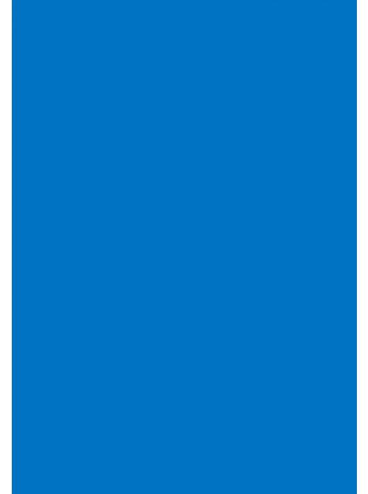 Colorama Colormatt 100 x 130 cm Electric PVC háttér (LLCO5047)